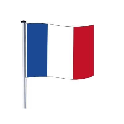 Drapeau Français (Officiel) pour Mât - Lot de 10