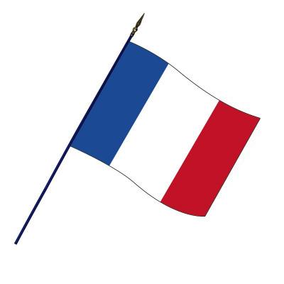 Drapeau Français (Officiel) avec Hampe