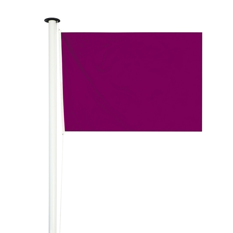 Drapeau de baignade réglementaire violet
