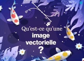 Image vectorielle ou vectorisée versus image matricielle ou bitmap