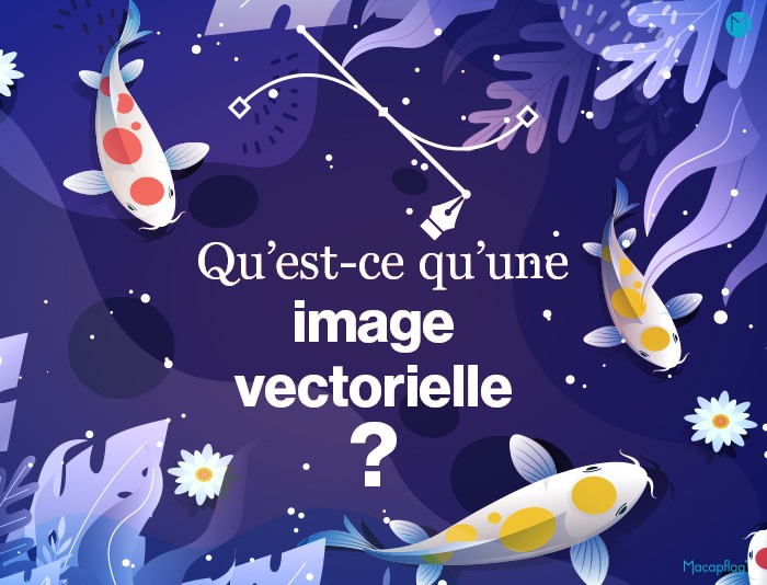 Qu Est Ce Qu Une Image Vectorielle Image Vectorisee Et Image Matricielle