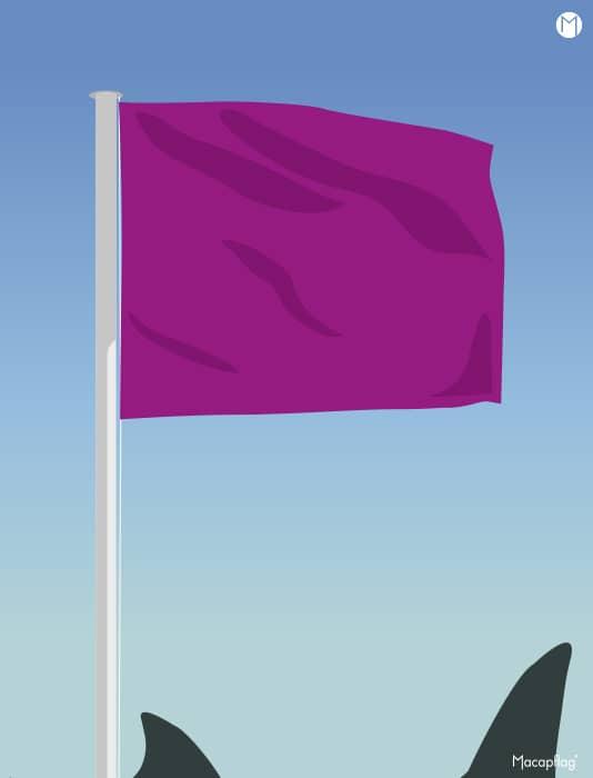 Drapeau violet rectangulaire des drapeaux de baignade réglementaires