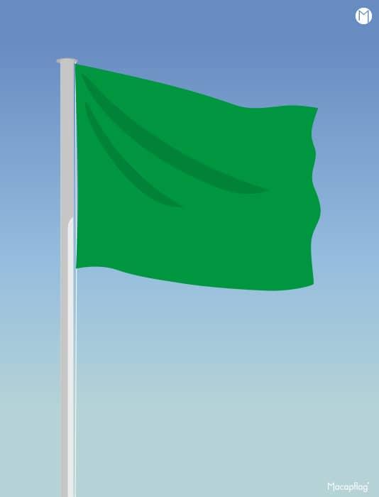 Drapeau vert rectangulaire des drapeaux de baignade réglementaires