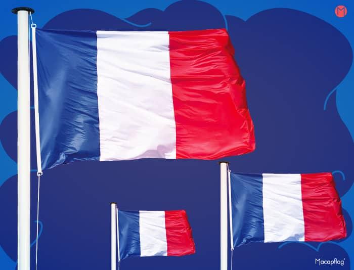 Drapeau France pour mât vertical